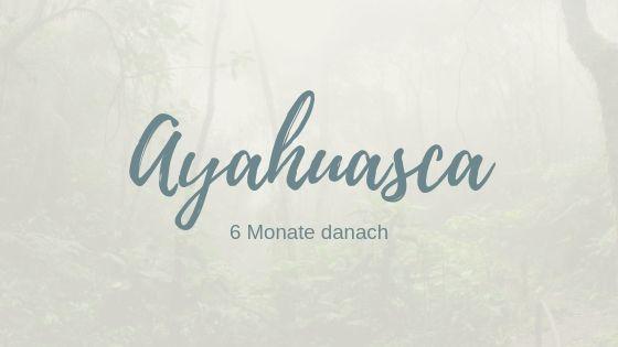 Ayahuasca – 6 Monate nach Rythmia, mein Erfahrungsbericht